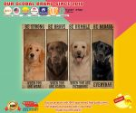 Poster Dog Be strong be brave be humble be badass2