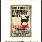 Chihuahua This Property Is Protected By The Good Lord A Chihuahua And A Gun